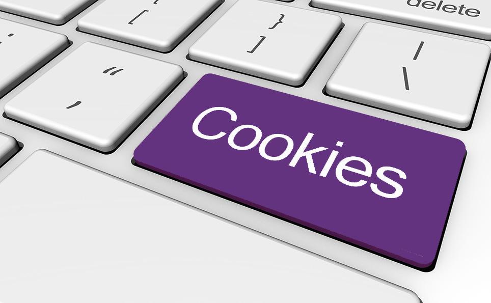 cookie policy dbest door and wndow parts online store door and window parts for sale online store